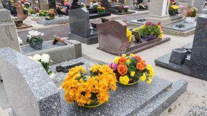 Cmentarz - groby